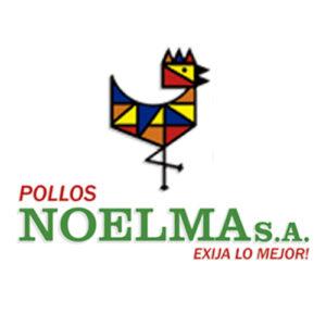 noelma pollos